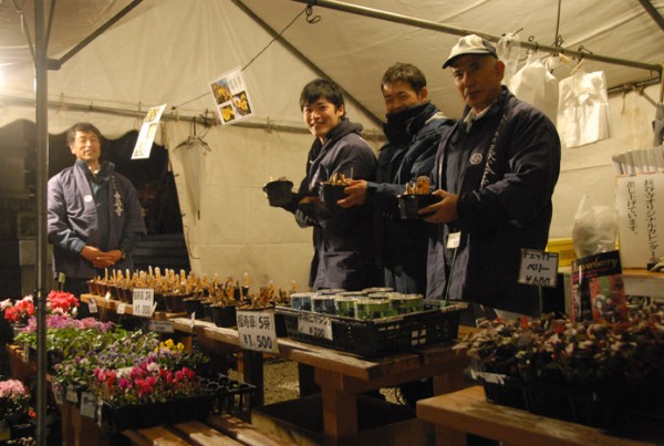 長谷寺職員による福寿草市(植木の販売会)も行われます。