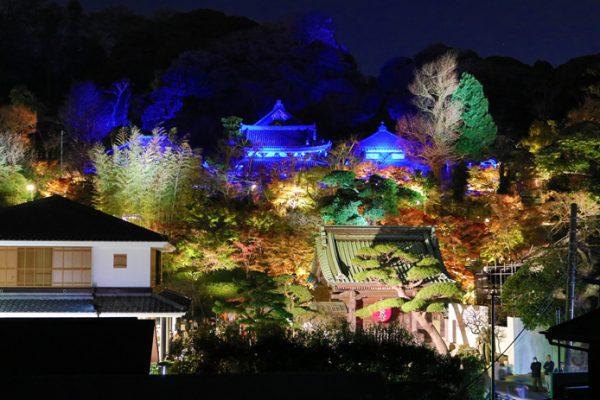 【終了しました】秋の夜間特別拝観